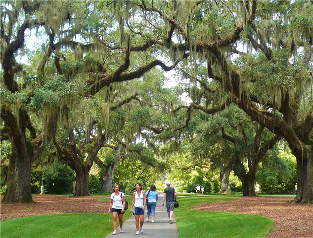 Marvelous Brookgreen Gardens. BrookgreenGardens